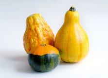 Gourds decorativos na tabela imagens de stock