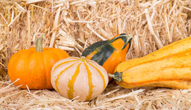 Gourds on a Hay Bale Royalty Free Stock Images