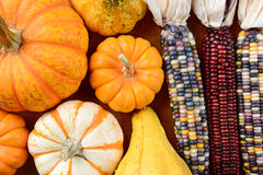 Gourds Indian Corn Filling Frame Stock Photos