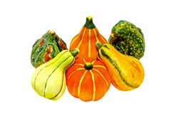 Gourds Isolated Stock Images