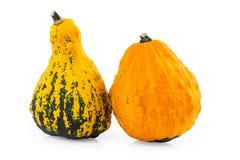 Gourds pumpkin decorative Stock Image