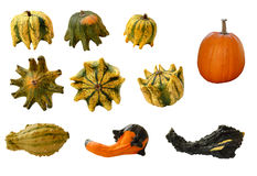 Gourds and pumpkins. Assortment of gourds and pumpkins isolated on white Stock Images