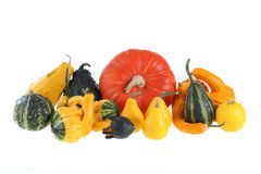 Gourds and pumpkins Royalty Free Stock Image