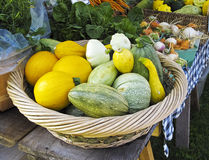 Gourds and Squash. Basket of gourds and summer squash for sale at farmers market stock photography