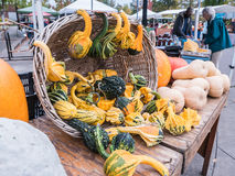 Gourds and squash on display in basket at Corvallis Farmers Mark Stock Photos