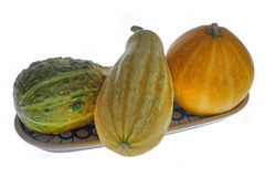 Gourds. Three small gourds on decorative plate Royalty Free Stock Images