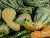 Gourds. Were plentiful at an open air market in southern Virginia stock images