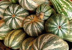 Gourds. Were plentiful at an open air market in southern Virginia stock photos
