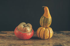 Gourds on wooden table Royalty Free Stock Photos