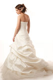 Gourgeus classical brides  profile Royalty Free Stock Images