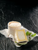 Gourmet Aged Cheese Rounds with Fresh Herbs Stock Photo