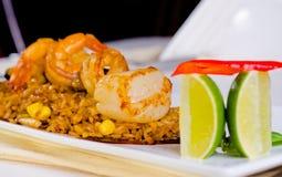 Gourmet Appetizing Rice Dish with Lemon Royalty Free Stock Photos
