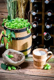 Gourmet beer Cellar full of bottles Stock Photo