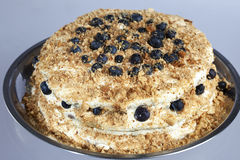 Gourmet Blueberry and Cream Torte Royalty Free Stock Images