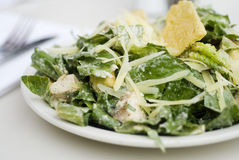 Gourmet Caesar Salad Stock Photography