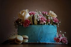 Gourmet Cake. Gorgeous gourmet birthday cake with blue icing, macarons, white roses, pink carnations and baby`s breath stock photography