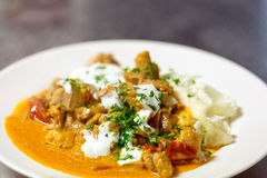 Gourmet catfish stew Royalty Free Stock Photo