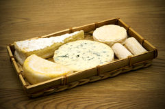 Gourmet Cheese Royalty Free Stock Photography