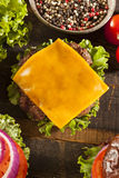Gourmet Cheese Burger on a Pretzel Roll Stock Images