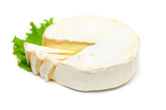 Gourmet cheese camembert Royalty Free Stock Image
