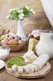 Gourmet Cheese and milk Royalty Free Stock Images