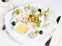 Gourmet Cheese Platter Appetizer Royalty Free Stock Images