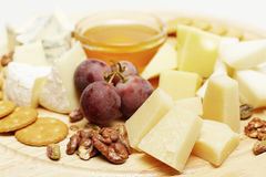 Gourmet cheese Stock Images