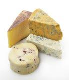 Gourmet Cheese Stock Image