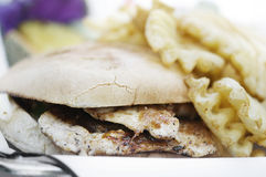 Gourmet chicken burger and fries Stock Images