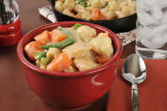 Gourmet Chicken and dumplings Stock Photography