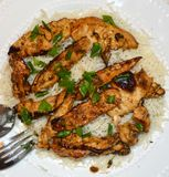Gourmet Chicken and Rice Cuisine Royalty Free Stock Photography