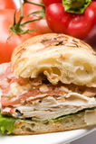 Gourmet chicken sandwich Royalty Free Stock Image