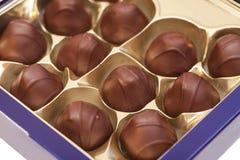 Gourmet chocolate bonbons Stock Images