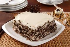 Gourmet chocolate cake Stock Photos