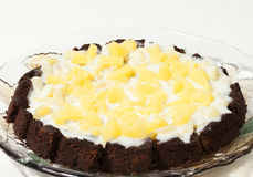 Gourmet Chocolate Cake with Pineapple. And Light Cream Icing stock photo