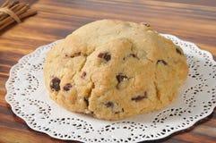 Gourmet chocolate chip cookie Stock Photos