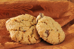 Gourmet chocolate chip cookies Stock Photography