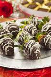 Gourmet Chocolate Covered Strawberries Royalty Free Stock Image