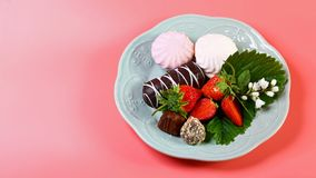 Gourmet Chocolate Covered Strawberries for Valentine`s Day, on a plate isolated on a pink background. Copy space royalty free stock photography