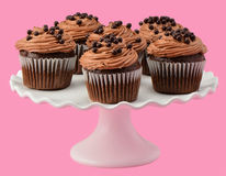 Gourmet chocolate cupcakes. On pretty ruffled cakestand on a pink background Stock Photography