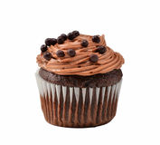 Gourmet chocolate iced cupcake Royalty Free Stock Images