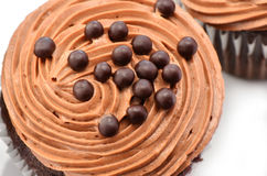 Gourmet chocolate iced cupcakes Stock Images