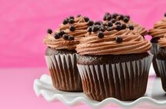 Gourmet chocolate iced cupcakes Royalty Free Stock Image