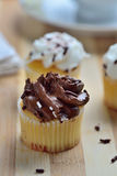 Gourmet Chocolate and Vanilla Cupcakes Stock Image