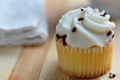 Gourmet Chocolate and Vanilla Cupcakes Royalty Free Stock Photos