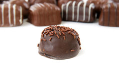 Gourmet chocolates Stock Photography