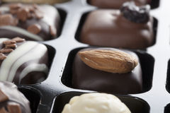 Gourmet Chocolates Stock Images