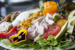 Gourmet cobb salad Royalty Free Stock Images