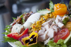 Gourmet cobb salad Stock Photos