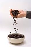 Gourmet coffee beans stock photos